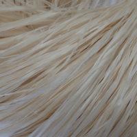 Ramie, tekstilfiber - Echigo-jofu, Ojiya-Chijimi-fu