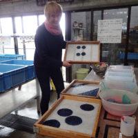 Papir- og fargeprøver
